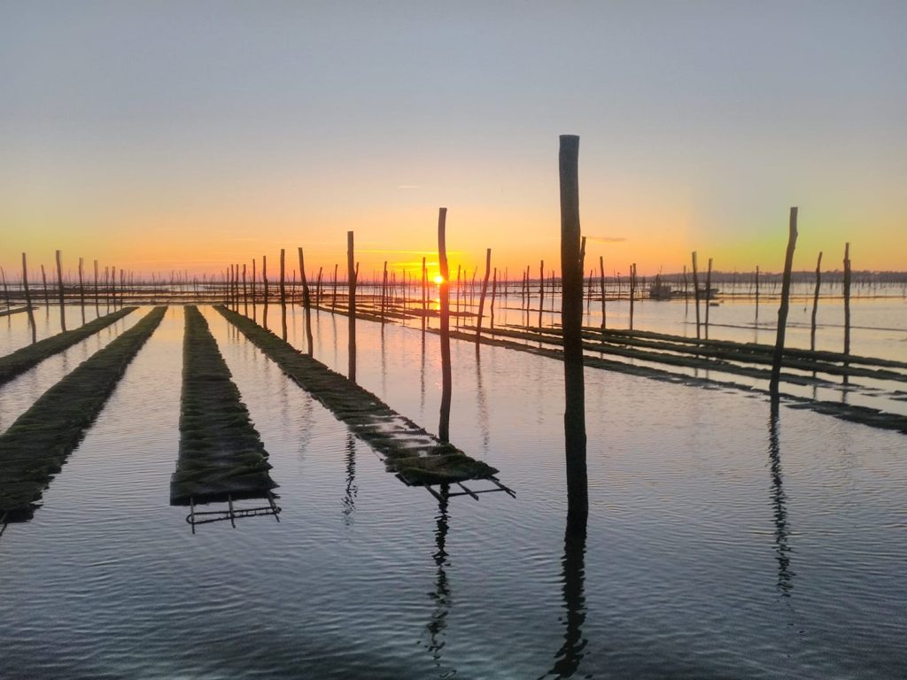 Bassin d'Arcachon, parcs à huitres au coucher de soleil